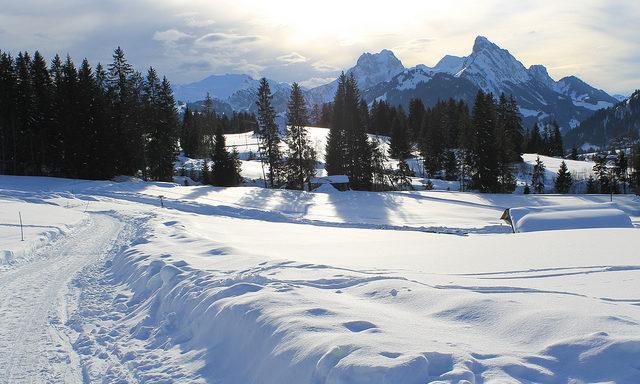 Трассы для равнинных лыж в Гштааде