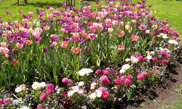 Парк в Бад-Ишле