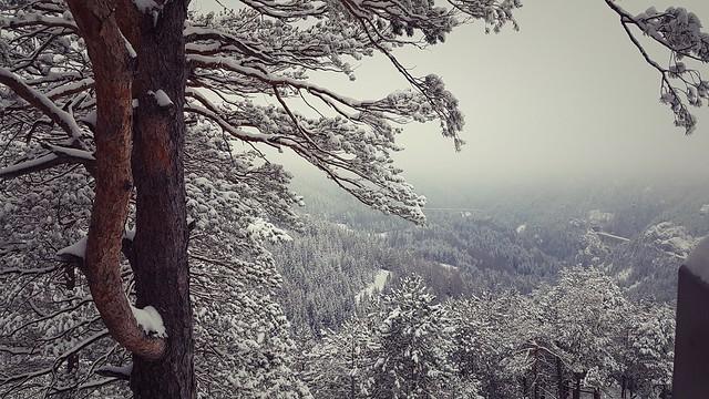 Зимние пейзажи Земмеринга